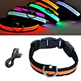 DARONGFENG LED Hundehalsband, wasserabweisendes Blinklicht Halsband, USB Aufladbare LED-Haustier-Halsband, Verlust Prävention Halsband in The Dark, Small, Orange