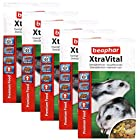Beaphar XtraVital Dwarf Hamster Food 500 g (Pack of 5)