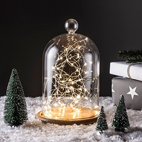 Campana de Cristal Alta 21cm con Base de Bambú y Micro LED de Luz Bla