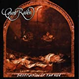 Destruction of the Void [Vinyl LP]