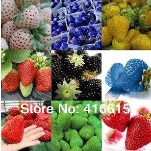 12-sortes-de-graines-de-fraises-vert-blanc-noir-rouge-bleu-giant-mini-bonsai-normal-rouge-pineberry-