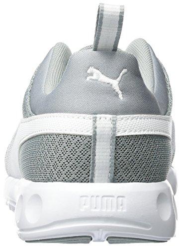 Puma Herren Carson Mesh Laufschuhe Grau (Quarry-Puma White 09)