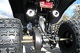 Kinder Quad Warriorer (Benzin 125ccm) - 8