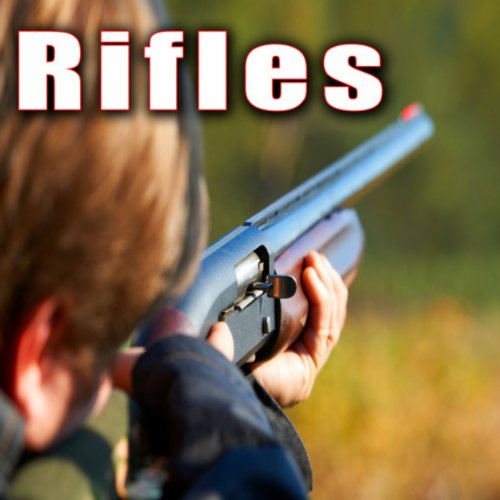 Two Shots from Police Ar 15 Rifle -