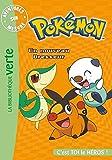 Pokémon - Aventures sur mesure - Un nouveau Dresseur...