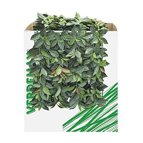 Verdemax 563550x 50cm Verdecor siepe con foglie like Photinia