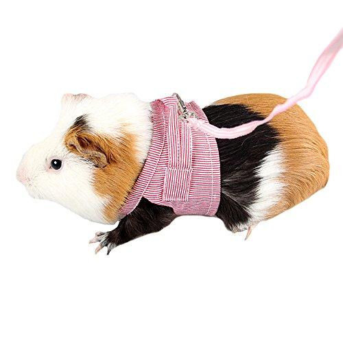 FLAdorepet Meerschweinchen Kaninchen Geschirr und Leine Baumwolle Kleine Tiere Hundegeschirr Weste für Teetasse