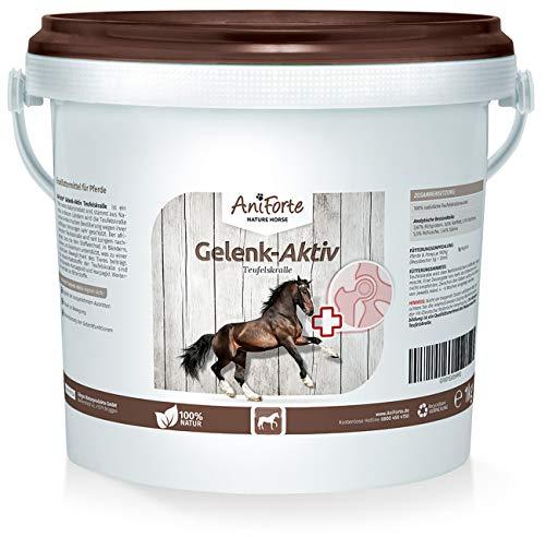 AniForte Teufelskralle Gelenk Aktiv Pulver 1kg für Pferde – Natur Pur, Unterstützung Gelenke, Gelenkfunktion, Beweglichkeit, Bewegung, Agilität, Vitalität Bewegungsfreude
