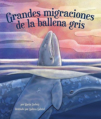 Grandes migraciones de la ballena gris por Marta Lindsey