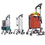 Carro de compras 35L con bolsa desmontable y resistente - Carro grande plegable con 6 ruedas Cesta...