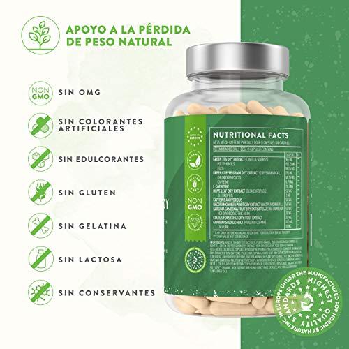518e%2BgpFpdL - Leanergy - Quemagrasas Natural en Cápsulas con Extracto de Té Verde, Guaraná, Garcinia Cambogia - Pérdida de Peso y Metabolismo Graso - 90% de Polifenoles - Compuestos Naturales - 100% Vegano