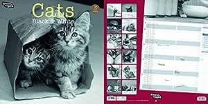 2016 Calendrier Nouvelles Images 2016 Chats Noir et Blanc « Cats B&W» (29 x 29 cm)