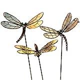 Gartendeko Gartenstecker Libellen Leuchten im Dunkeln zum Stecken 3 Stück