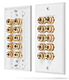 Fosmon [Fünf Lautsprecher] Home Theater Wandplatte - Premium Quality Gold Plated Kupfer-Banane Binding Post Coupler Type Wall Plate für 5 Speakers (Weiß)