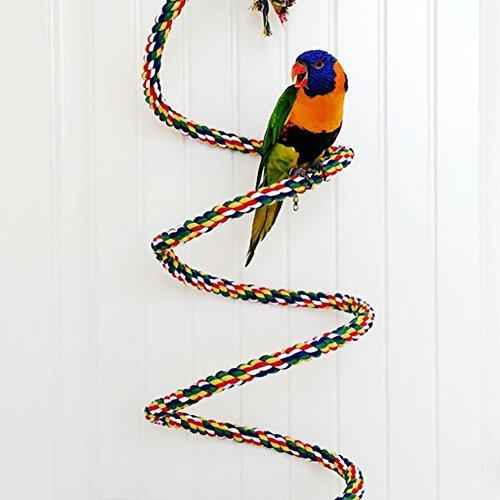 Gorgebuy Farbige Vogel Spielzeuge Lebensraum Kletterseil mit Glocke,Vogelspielzeug Hänge Käfig Seil,Spielzeug für Vogel Papageien Graupapageien