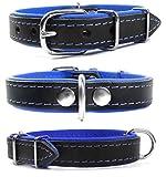Zweifarbiges Echt Leder Hundehalsband S M L XL XXL für kleine bis sehr große Hunde schwarz blau XXL
