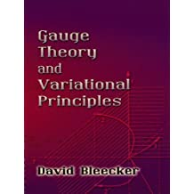 Gauge Theory and Variational Principles