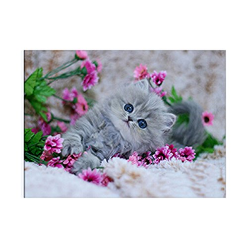 5D DIY Handmade Round Diamond Embroidery Painting Rhinestone Cross-Stitching Set Mosaic Home Room Decoration Best Gift (Cat-Flower)
