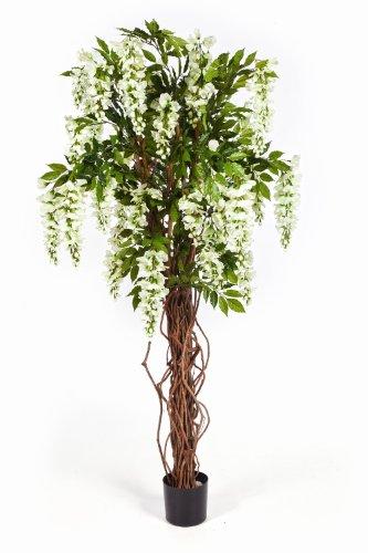 artplants – Deko Goldregenbaum Ariana, weiß, 975 Blätter, 35 Blüten, 180 cm – Künstliche Wisteria Pflanze/Kunst Blumen Baum