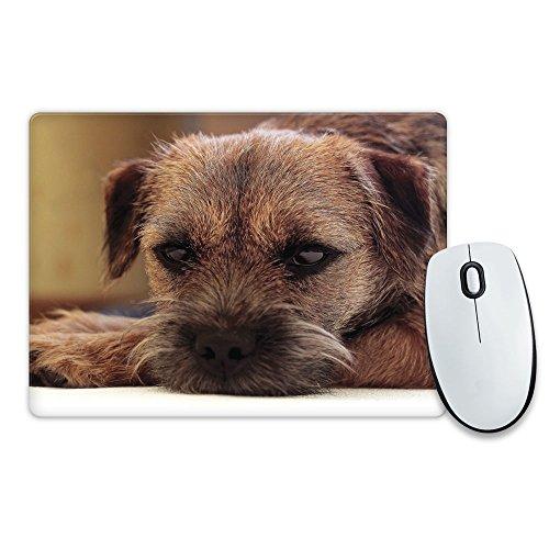 border-terrier-dog-animal-mouse-mat-045