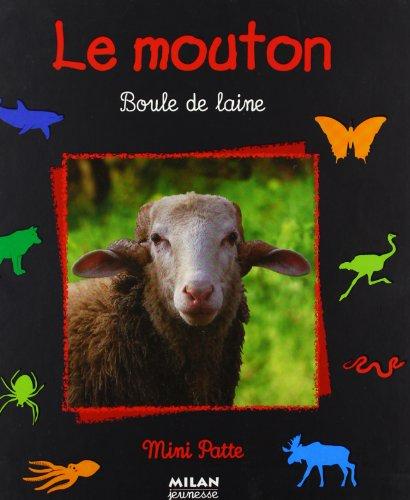 Le Mouton : Boule de laine