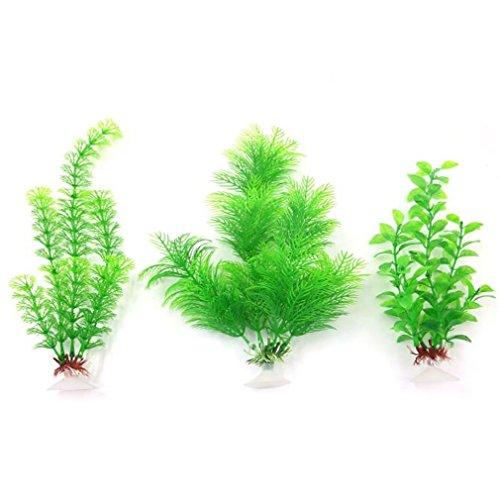 plastica-decorazione-acquario-erba-pianta-ventosa-3pcs-multicolore