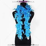 Shoppy Star 1 Stück 2 Meter Flauschige Truthahn-Federboa 40 g Rock Trim für Party Kostüm Schal Hühnerfedern Kleid Hochzeit Party Dekoration türkis