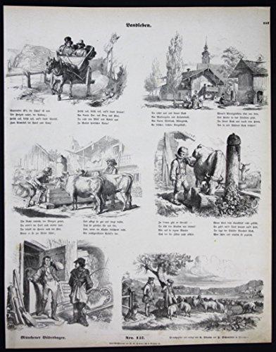 Landleben - Bauern Dorfleben Biedermeier Münchener Bilderbogen Nr 157