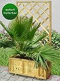 Blumenkasten mit Rankgitter Zizania 02-75 x 30 x 180 cm (B x T x H)