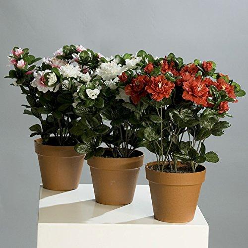 Azalee getopft 3 Stück farbig sortiert Kunstblumen von DPI