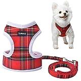 Geschirr Und Leine,Rot Kariert, Verstellbar, Weste, Für Kleine Hunde, Welpen, Katzen, Kleine Haustiere, Süß Und Weich