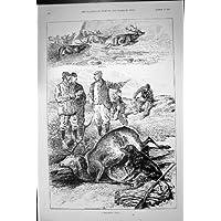 Sport Antico della Fucilazione di Appostamenti del Maschio di Caccia dei Cervi della Stampa 1891 - Caccia Dei Cervi Decor