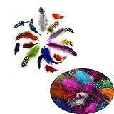 200pcs Plumas de la decoración,Pluma de Color Pluma Manualidad de Plumaje Artesanal para DIY, Disfraz, Atrapasueños, Decoracion Sombrero, Fiesta de Boda,Decoraciones para Fiestas en el hogar