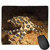 Blue Ring Octopus Personalized Design Mauspad Gaming Mauspad with Stitched Edges Mousepads, Non-Slip Rubber Base, 300 x 250 x 3 mm Thick - Best Gift Idea