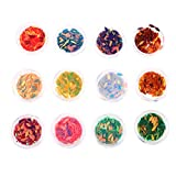 Sharplace 12 Dosen Glitter Nagelsticker Kunstnägel Dekorationen Sticker Fingernagel Aufkleber DIY Nagelkunst - Oval