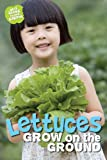 WHAT GROWS IN MY GARDEN - LETTUCES