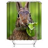 Badvorhänge für Duschvorhang Lustiger Tier Dekor, niedliches Tier Spaß flaumiges Kaninchen Benutzerdefinierte Wasserdichte Mehltau Proof Digital Gedruckte Badezimmer Vorhänge 60