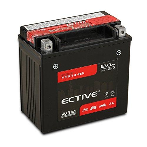 ECTIVE 12V 12Ah AGM Motorradbatterie YTX14-BS | 8 Varianten: 4Ah - 18Ah | 12 Volt Motorrad Batterie Starterbatterie inkl. Säurepack absolut wartungsfrei | 51214 CTX14-BS | Premium Powersports