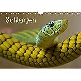 Schlangen (Wandkalender 2017 DIN A4 quer): Giftige und ungiftige Schlangen in beeindruckenden Farben (Monatskalender, 14 Seiten ) (CALVENDO Tiere)