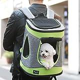 Petsfit Stoff Faltbarer Haustiertragetasche für Hunde und Katzen, Farbe Grau, Rucksack, 43cm x 31cm x 29cm