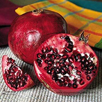 Pinkdose® 2018 Heißer Verkauf Rare Punica granatum Lieblings Köstliche Kleine Granatapfel Obst Samen, Professionelle Pack, 20 Samen/Pack, Süße Woody Pflanzen