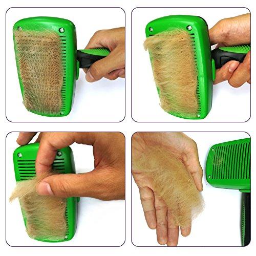 Zoom IMG-3 toelettatura professionale pietypet autopulente spazzola