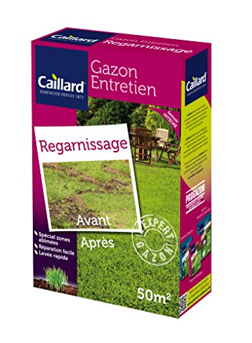 Caillard PFSA19792 Graines de Gazon Regarnissage 1 kg 50 m²