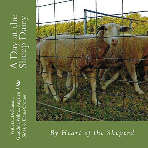 A Day at the Sheep Dairy (English Edition)