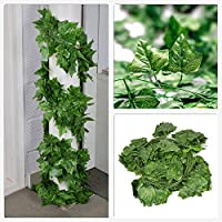Optima Artificial Creepers Ivy Leaves for Decoration Green Garlands Plants for Home and Office Decoration Pack of 5 Strands Each of 7 ft