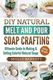 DIY Natural Melt and Pour Soap Crafting: Ultimate Guide to Making & Selling Colorful Natural Home-made Soaps
