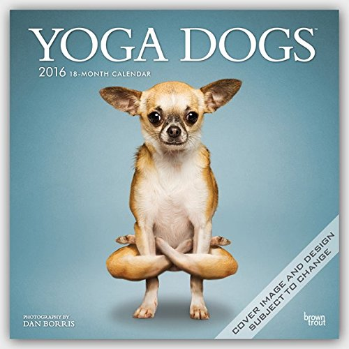 Yoga Dogs 2016 Wall