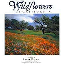 Wildflowers of California (Companion Press)