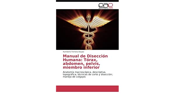 Buy Manual de Disección Humana: Tórax, abdomen, pelvis, miembro ...
