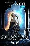 Soul Symmetry (Raven Series Book 3)